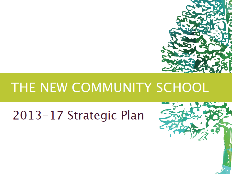 2013-17 Strategic Plan